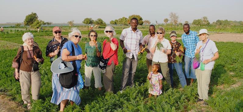 Lush garden by Niger River, Mali.