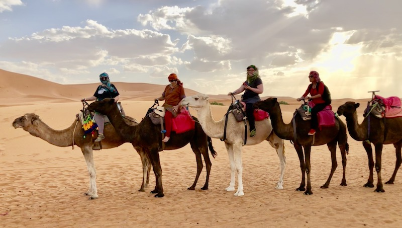 Riding camels on Erg Chebbi sand dunes of Morocco