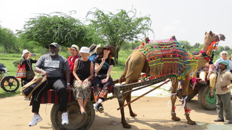 Textile group rode a camel cart down the lane to the BlockPrint House to see Deepak, in Bagru.